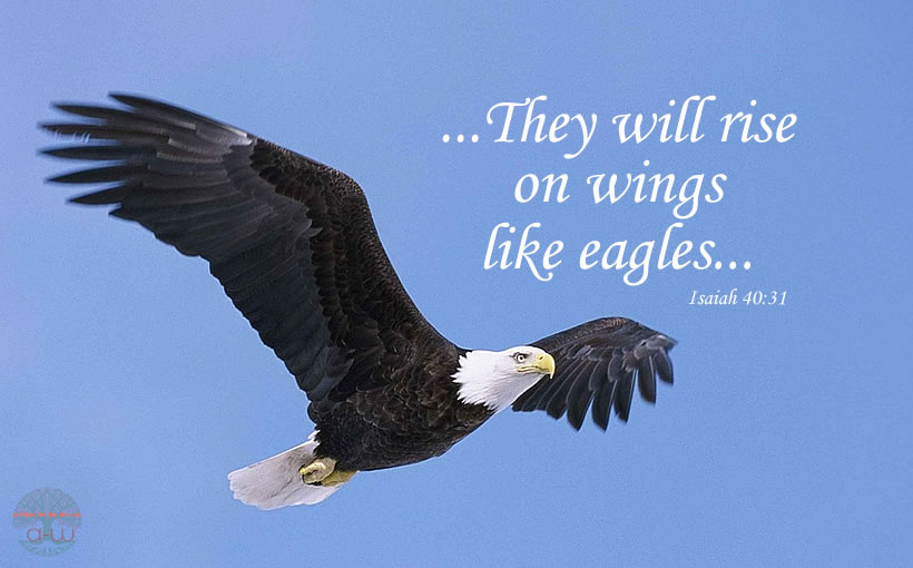 They will rise on wings like eagles
