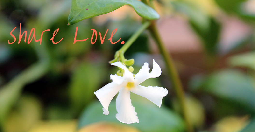 share-love-rev